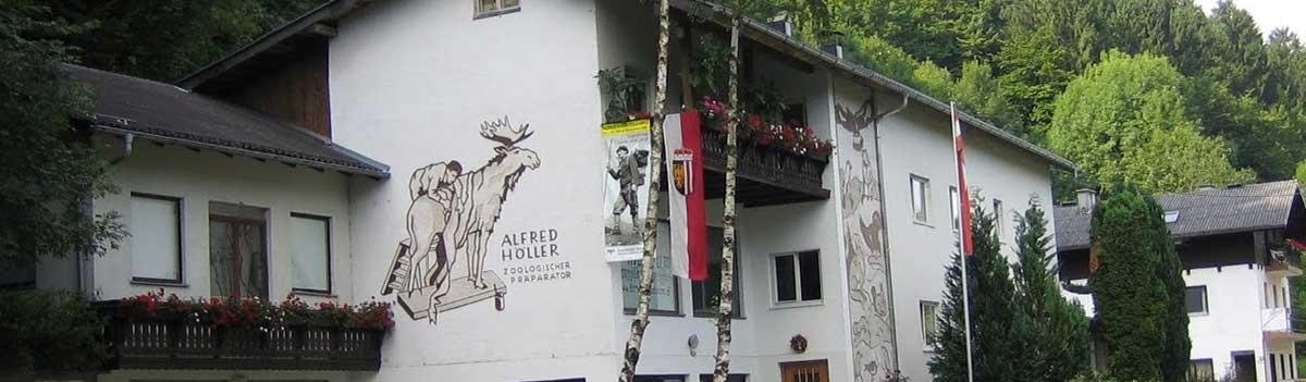 Tierpraeparator-Hoeller-Oberösterreich-Tierpraeparate-kaufen-(Online-Shop)